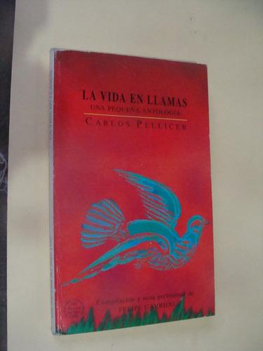 libro la vida en llamas , carlos pellicer  , año 1996 ,  142
