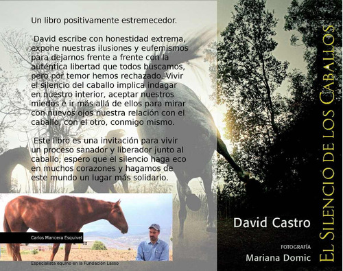 libro los caballos
