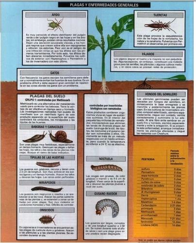 libro   manual horticultura  jardin conuco siembra  cultivo