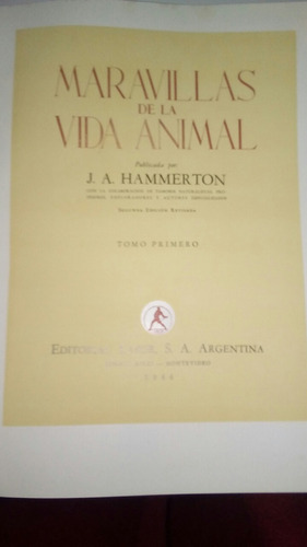 libro maravillas del mundo animal