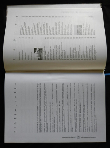 libro musica poesia decimas de los pueblos de agua