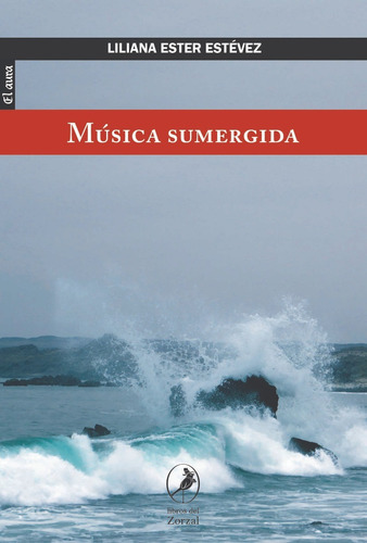 libro música sumergida