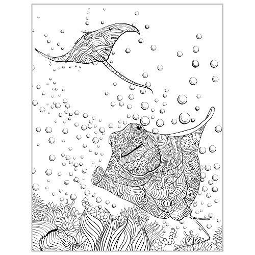 Libro Para Colorear Animales Del Oceano Liberador De Estré
