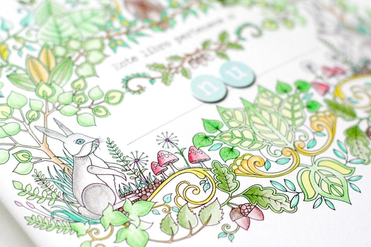 Libro Para Colorear El Bosque Encantado No Jardin Secreto