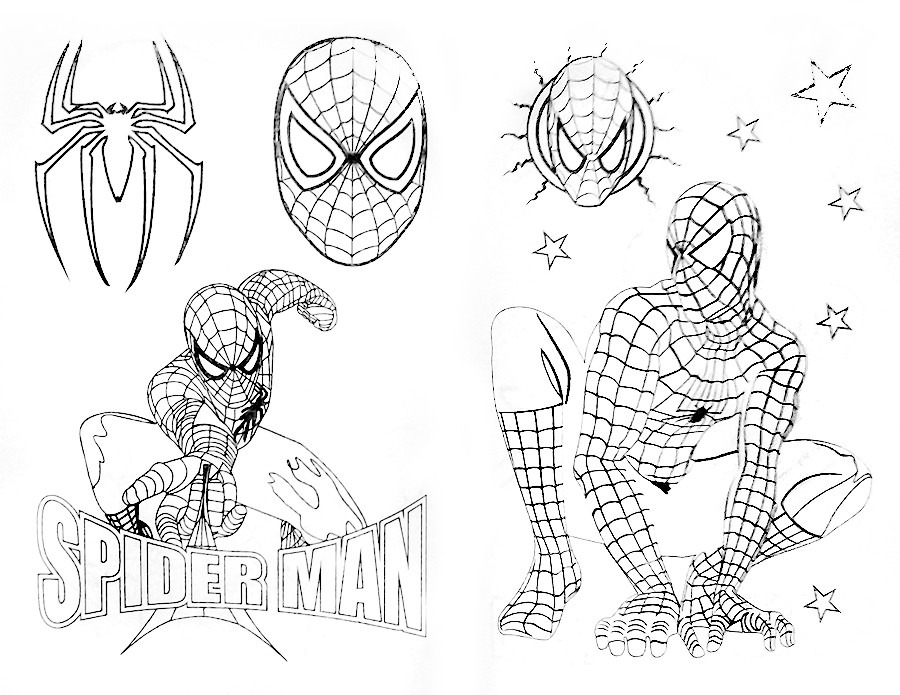 Spiderman Para Colorear Para Libro De Spiderman Para
