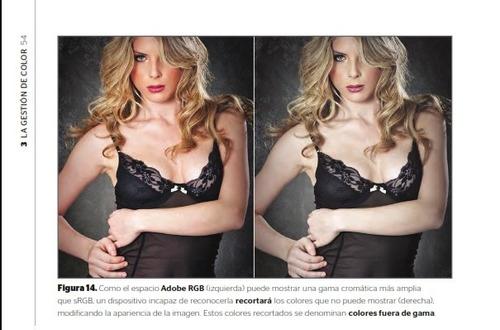 libro photoshop profesional técnicas de manipulación/retoque