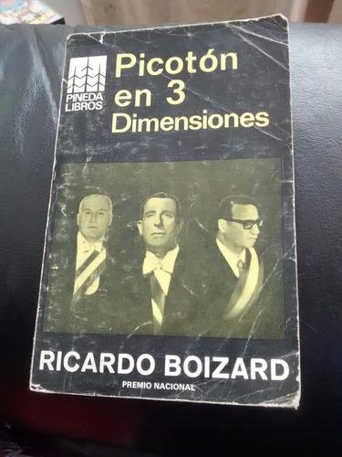 libro picoton en 3 dimensiones -ricardo boizard (16