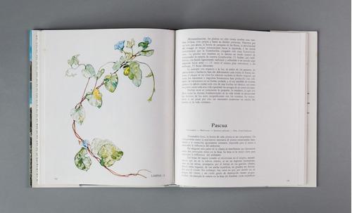 libro plantas entre el mar y la tierra armitano