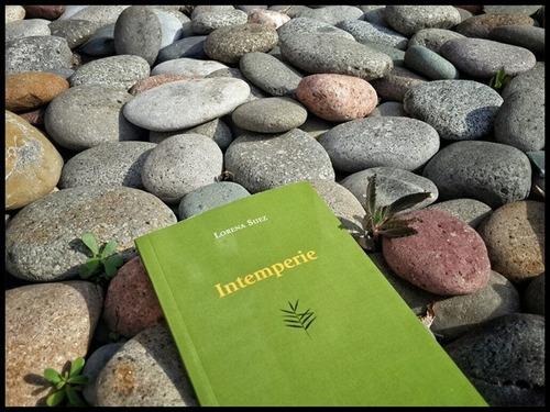 libro poesía intemperie lorena suez viajera editorial