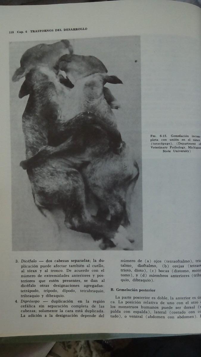 Lujo Sitio Web De La Anatomía Michigan Embellecimiento - Imágenes de ...