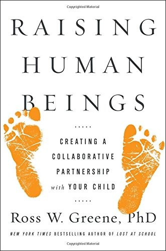 libro raising human beings: creating a collaborative partner