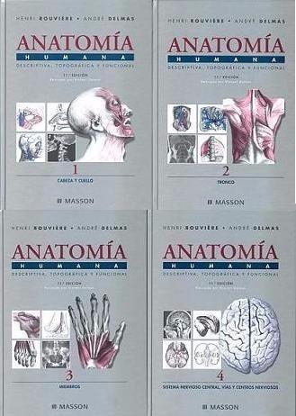libro  rouviere anatomía humana descriptiva
