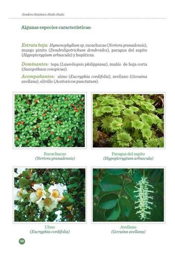 libro: sendero botánico