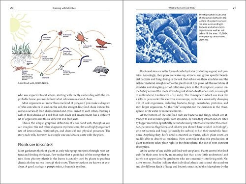 libro teaming with microbes: the organic gardener's guide