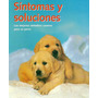 Sintomas Y Soluciones: Remedios Caseros Para Perros