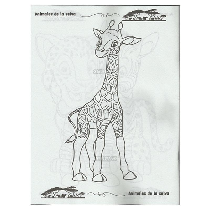Libros Para Colorear Infantiles Animales De La Selva 650 En