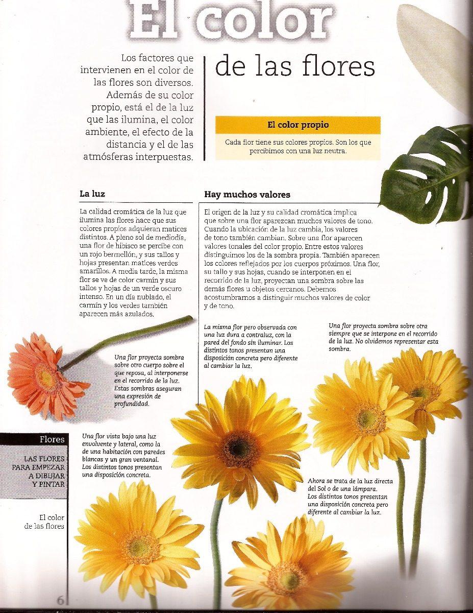 Libros: Pintar Flores. Pintar Con Acrílico. Pintura. Fotos - Bs ...