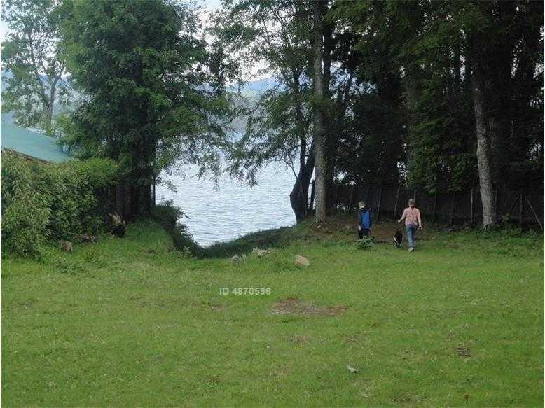licanray, orilla de lago.