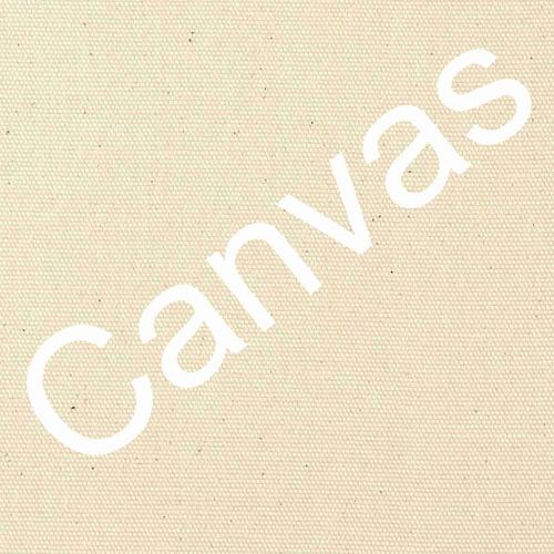 lienzo tela canvas arte alameda cd méxico josé maría velasco
