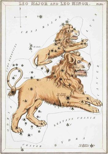 lienzo tela constelaciones leo año 1825 50x72 cm astronomía