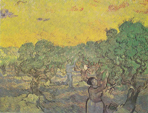 lienzo tela vincent van gogh huerto olivos 1889 50 x 66 cm