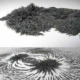 Limadura De Hierro Campos Magneticos Experimento Iman Planta