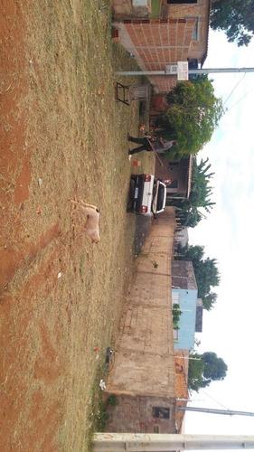 limpeza de terreno roçada de grama retirada de entulho