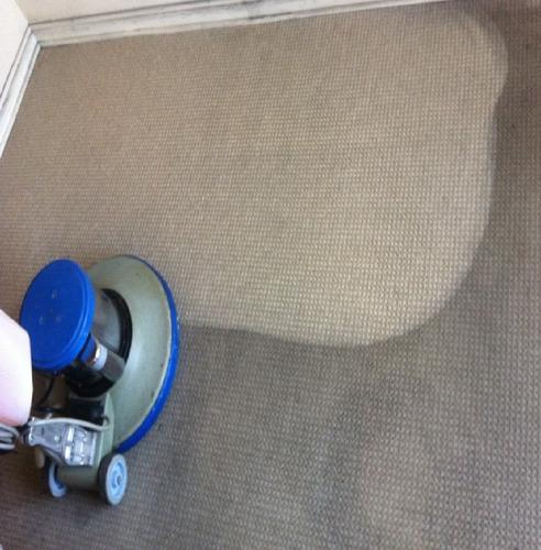 limpieza alfombra tapiz