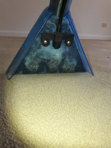 limpieza alfombras con