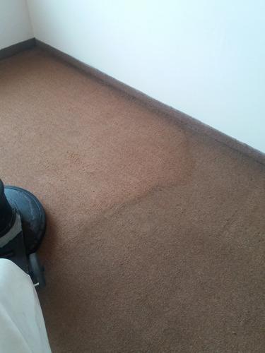 limpieza alfombras, tapetes,