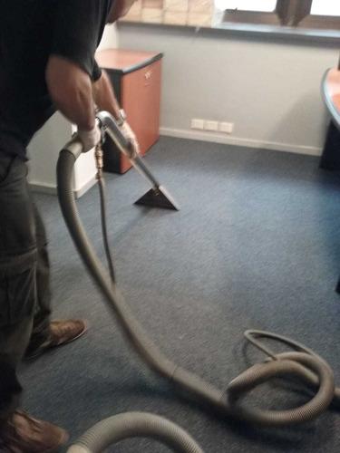 limpieza alfombras tapizados