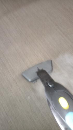 limpieza alfombras,sillones,colchones, autos.