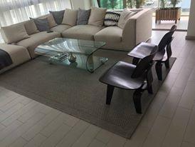 limpieza de alfombras en santo domingo 809-273-7599