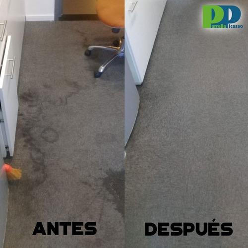 limpieza de alfombras, sillones, moquette -desinfección-