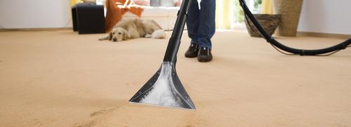 limpieza de alfombras y moquets moquetas carpetas empresas