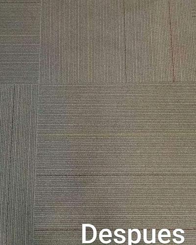 limpieza de alfombras y moquettes