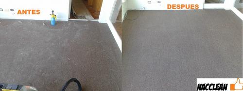 limpieza de colchones,alfombras,sillones,sillas,empapelados