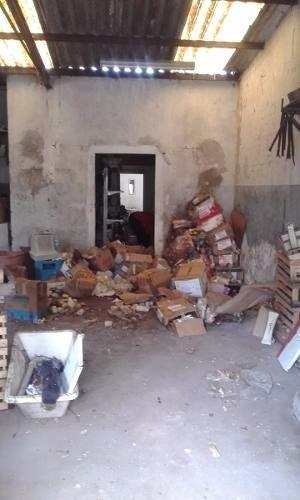 limpieza de galpones,altillos,casas abandonadas,terrenos,etc
