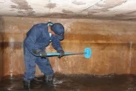 limpieza de tanques de agua potable y fumigaciones