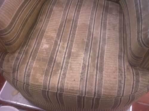 limpieza de tapizados alfombras sillones a domiclio,rosario!