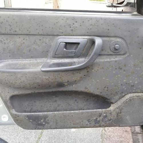 limpieza de tapizados desinfección interior cuero pana auto
