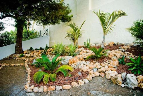 limpieza de terrenos. parques .jardinería. paisajismo.
