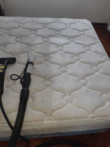 limpieza desinfección de alfombras- sillones- tapizados