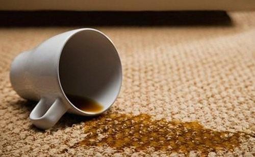 limpieza limpieza alfombras tapizados