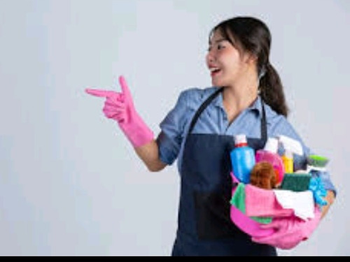 limpieza por hora $275 la hora