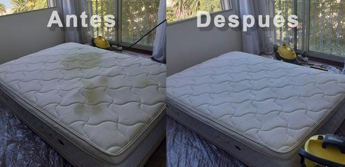 limpieza sillones / colchones / sommier /alfombras / autos