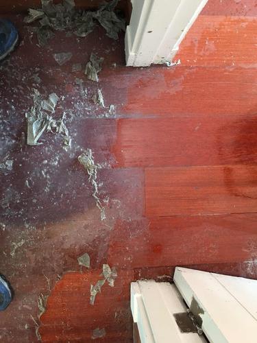 limpieza tapicería, alfombras, pisos flotantes ,vehículos