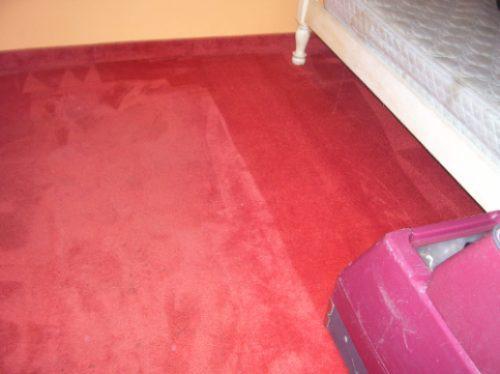 limpieza y lavado de alfombras,carpetas y tapizados .