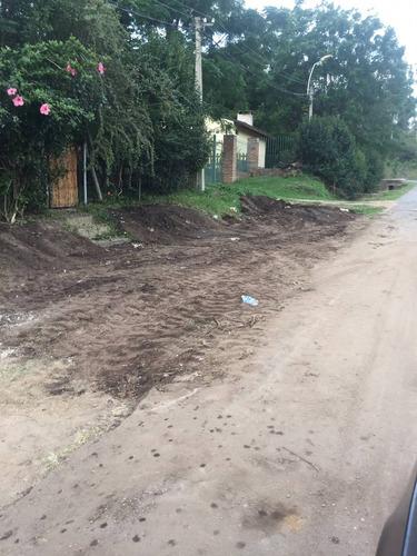 limpieza y nivelaciòn de terrenos y movimientos en general