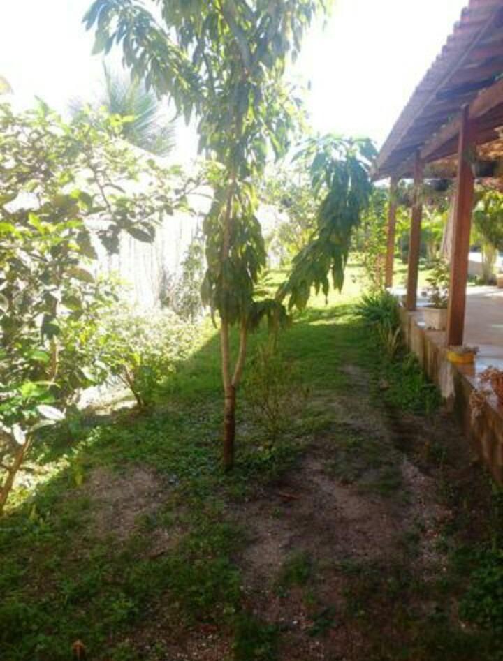 linda casa com piscina e árvores frutíferas